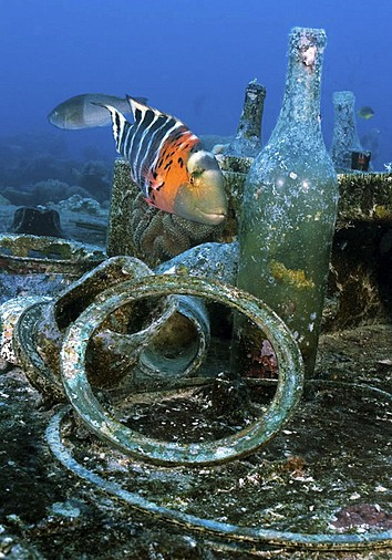 Truk Micronesia Diving Holidays And Liveaboards